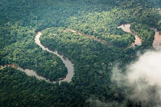 Congo Brazaville safari Open Comunicación