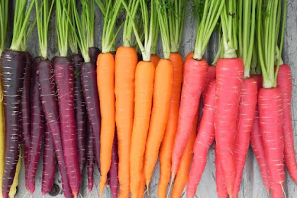 The benefits of eating carrots every day for health