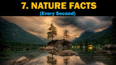 Nature Facts Every Second, Nature Facts, Every Second