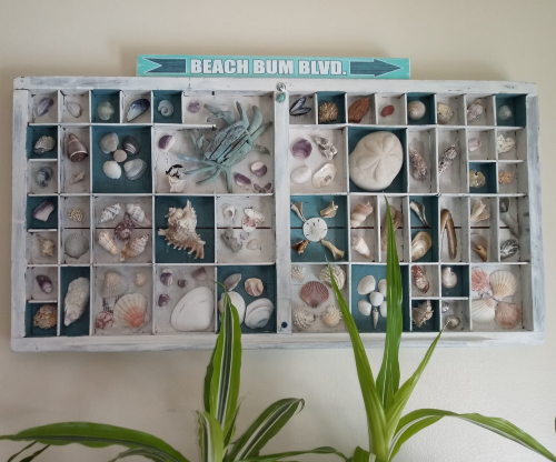 Sea Shell Beach Art Printer Tray Idea