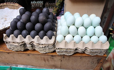 black duck eggs & blue chicken eggs