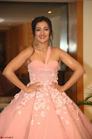 Catherine Tressa looks super cute in strapless sleeveless deep short dress at 64th Jio Filmfare Awards South ~  Exclusive 167.JPG