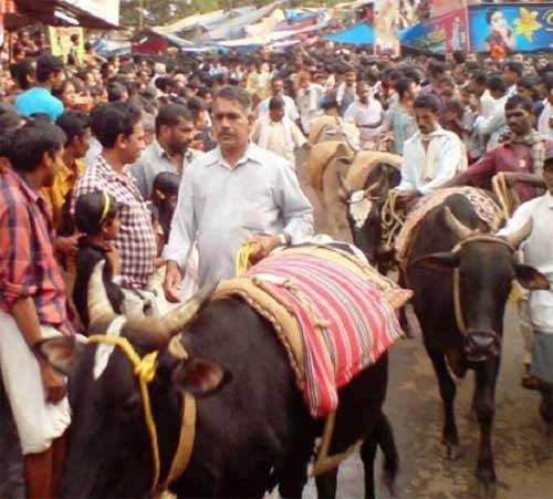 Payyavoor Oottu Utsavam Kaalavaravu