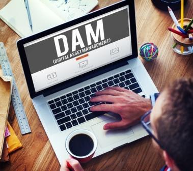 digital asset management platforms