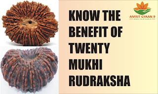 Know The Benefit Of Twenty Mukhi Rudraksha