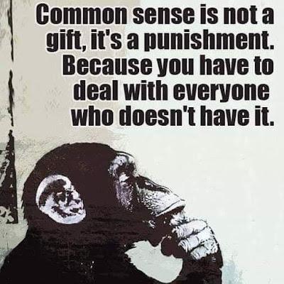 Common sense is not a....