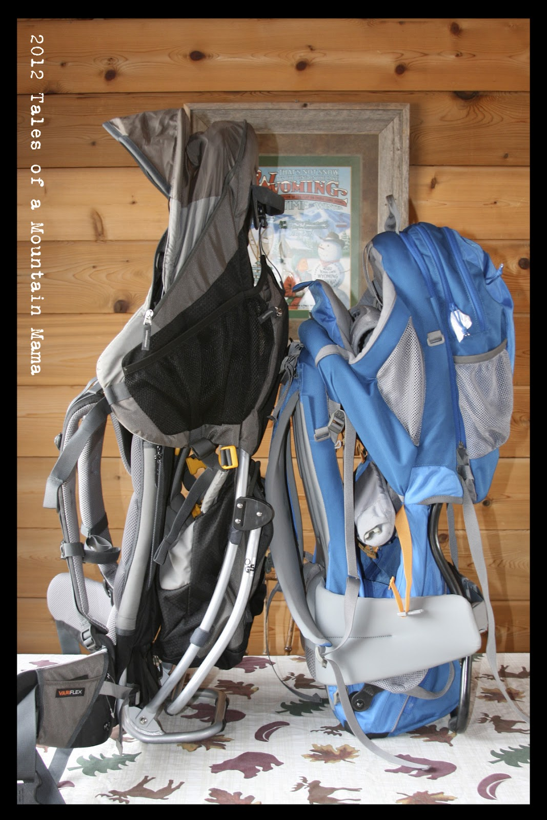 01f65d7c1f5 REVISED!  Choosing a Kid Carrier (Deuter vs. Kelty) - Tales of a ...