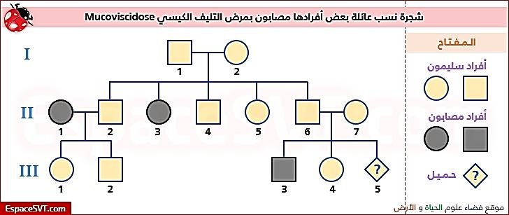 حل اسئلة التقويم 1 8 درس الأنماط الأساسية لوراثة الإنسان الوراثة المعقدة والوراثة البشرية العلم نور