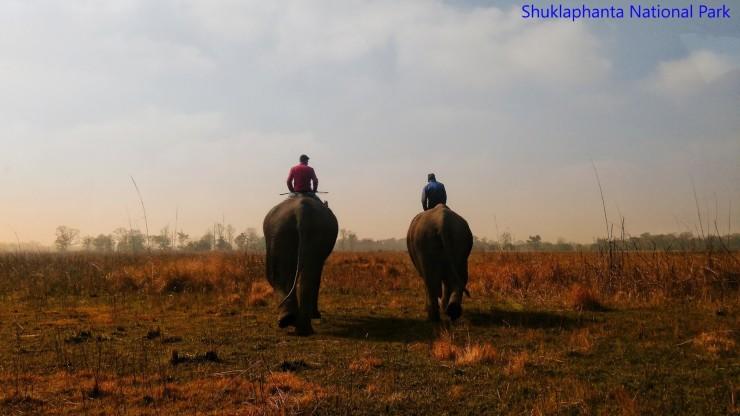 Shuklaphanta national park,Tourist Destination in Western Nepal