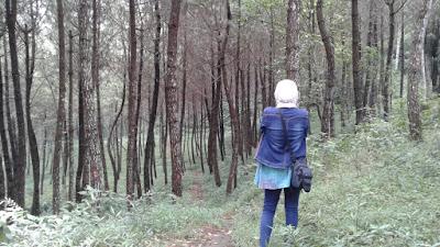 Wisata Kabut Sukorini Foggy Village Kemitir Kabupaten Semarang