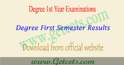 Palamuru university degree 1st sem results 2020 first year exams