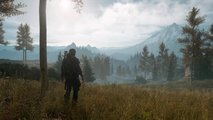 Days Gone pic 5