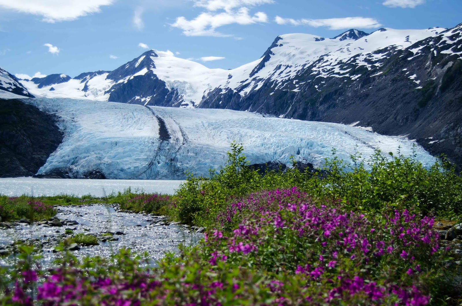 Portage Glacier Trail (all The Way To The Beach