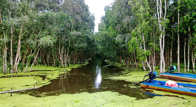 Why the Mekong Delta in Vietnam Is Worth the Visit? 2