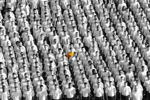 Identify what makes you stand out from the crowd