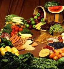Permaculture Design For Food' - www.kninfocare.blogspot.com