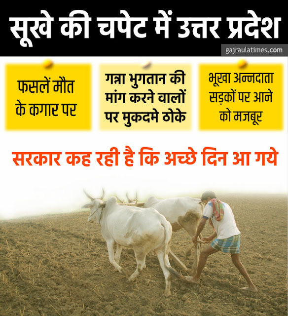 infographic-farmer-condition-drought