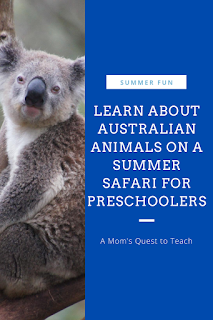 Text: Summer Fun: Learn About Australian animals on a summer safari for preschoolers; A Mom's Quest to Teach; photo of koala