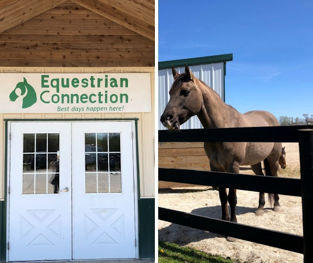 """""""Best Days Happen Here"""" Learn about the Fantastic Work At Equestrian Connection in Lake Forest, Illinois"""