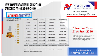 Pearlvine Auto pool Income plan - Amethyst Auto Pool Income Chart