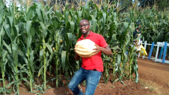 High farm output in 2020 is a defining moment for smallholder farmers in Kenya