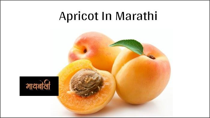 Benefits Of Apricot In Marathi - जर्दाळू खाण्याचे फायदे