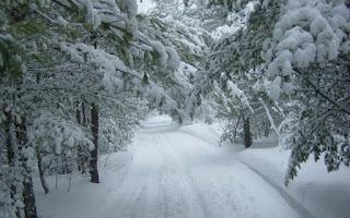 Красива зимна панорама