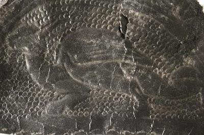 Μεσαιωνικό κομμάτι δέρματος διακοσμημένο με δράκο βρέθηκε στο York