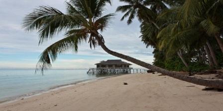 pulau derawan berau kaltim pulau derawan kabupaten berau pulau derawan terletak di pulau derawan kalimantan timur pulau derawan di berau