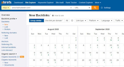 layanan backlink checker