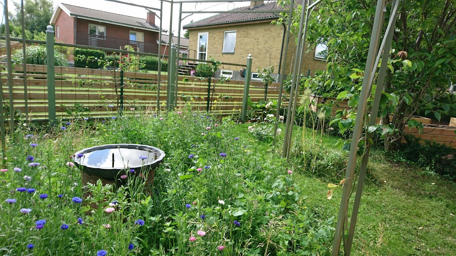 Trädgård plank trädgård : Jugendhuset