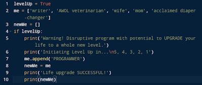 self-taught python programming