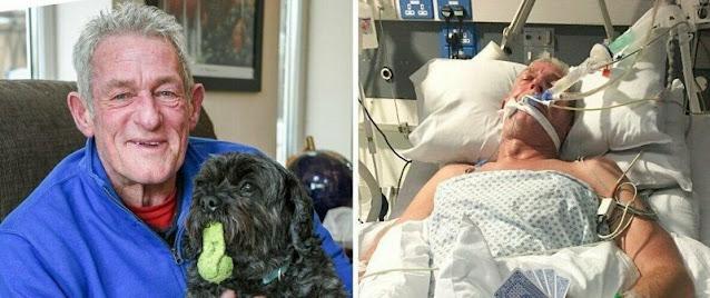 История, достойная фильма: 65-летний хозяин вышел из комы, услышав любимого пса