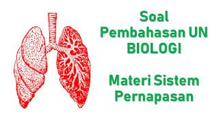 Soal Pembahasan UN Biologi Materi Sistem Pernapasan