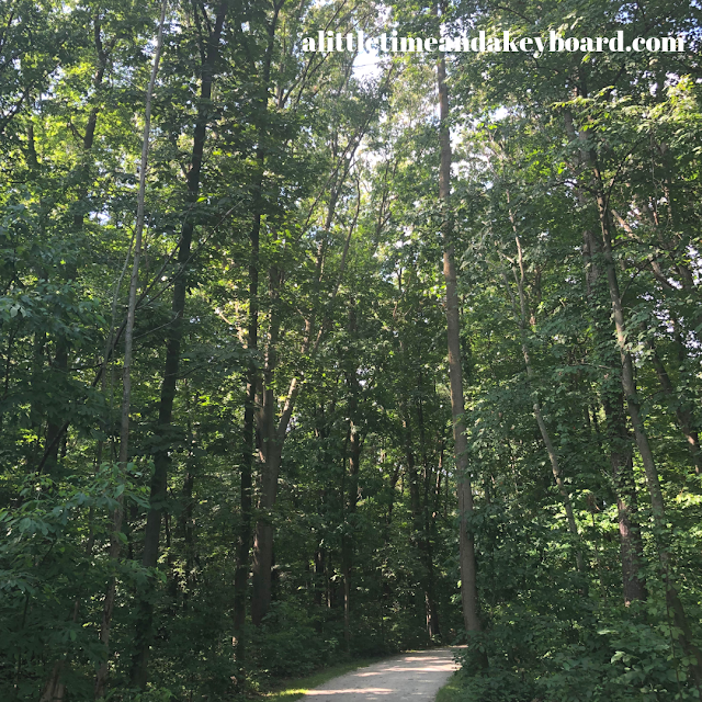 Walking on a path through the woods at Galien River County Park