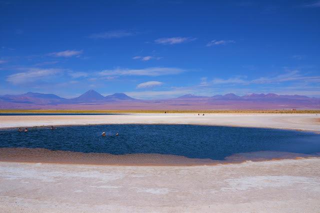 E que vista na Laguna Cejar
