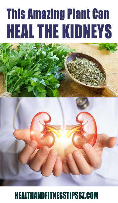 PLANT FOR HEAL THE KIDNEYS