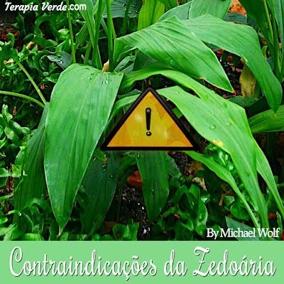 Contraindicações da Zedoária