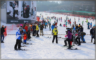 Festival Ski, Gangwon-Korea