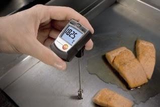 Darmatek Jual Testo 905-T2 Thermometer