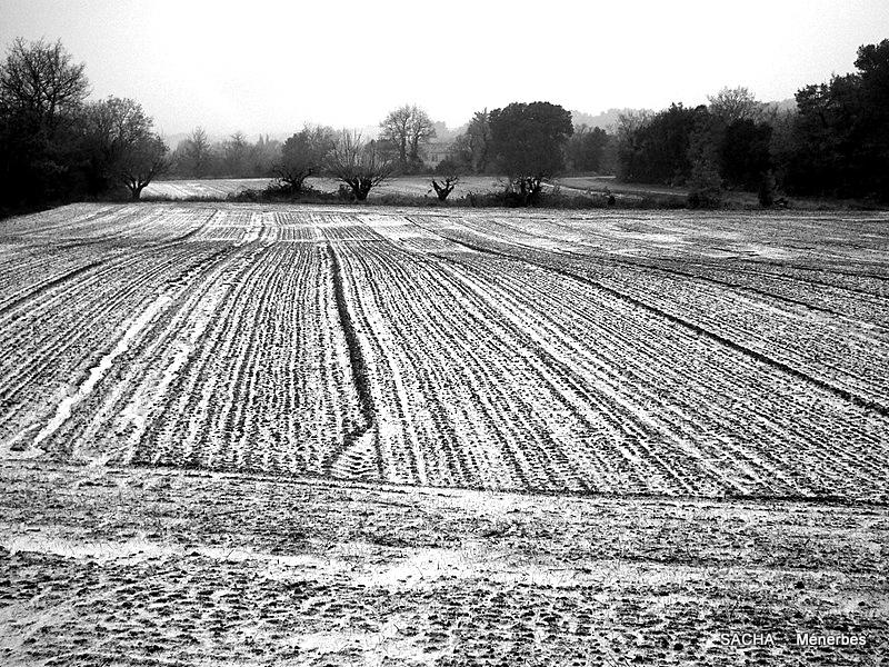 Un jour une photo les morsures de l 39 hiver - Jour de l hiver ...