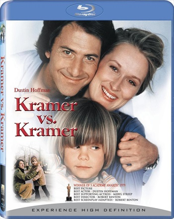 Kramer Vs Kramer 1979 Dual Audio Hindi 480p BluRay 300mb