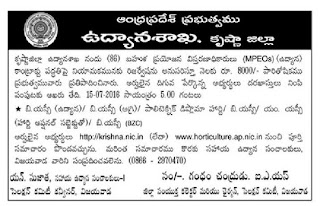 Vijayawada Krishna District Horticulture Department Multi Purpose Extension Officer MPEO Recruitment 2016 86 GovtJobsOnline