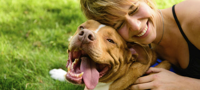 Quien tiene en su vida a un perro tiene un tesoro