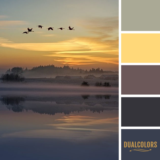 color_paleta_186