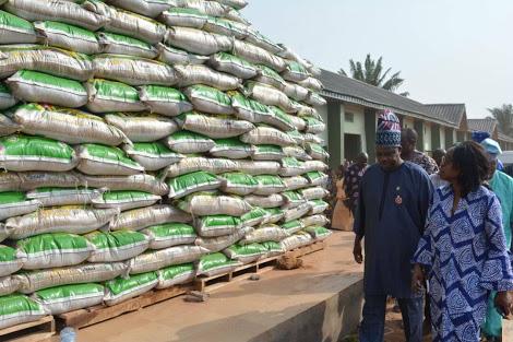 Ogun State Set To Start Mass Sale of Ofada Rice For Christmas Season