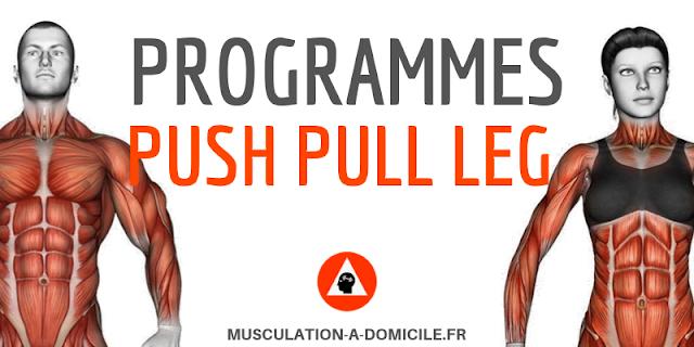 musculation-a-domicile_programme_musculation-debutant-poids-du-corps-haltere_push-pull-leg