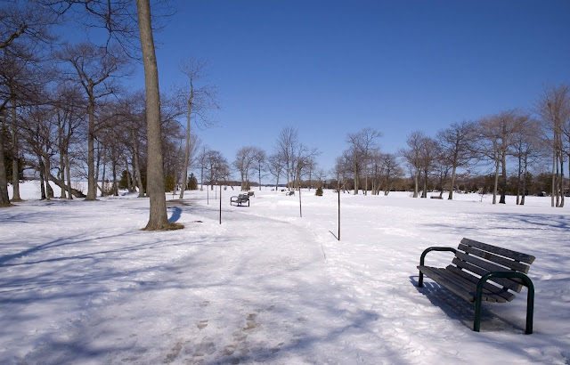 A view of Tudhope park, Orillia, covered in winter snow.