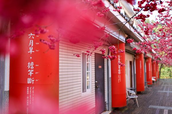 苗栗三義藝術村櫻花渡假會館,櫻花藝術街愜意賞櫻,三義木雕街旁
