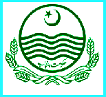 Latest Jobs in  Punjab Specialized Health Care And Medical Education Department